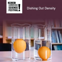 The image for Little Chefs Lab: Dishing Out Density